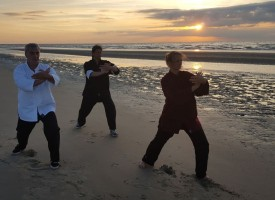 Yen_long_club_art_martiaux_dunkerque_vo_thuat_y_quyen_posture_taiji_tai_ji_quan_chi_qi_gong_meditation_eventail_bien_etre_combat_arme-epee-self_defense_vietnamien_1